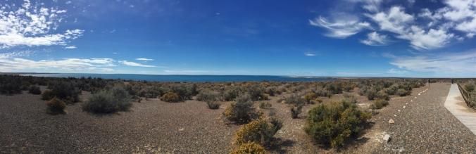 Punta Tombo panorama