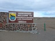 National Park Magellanic Penguines