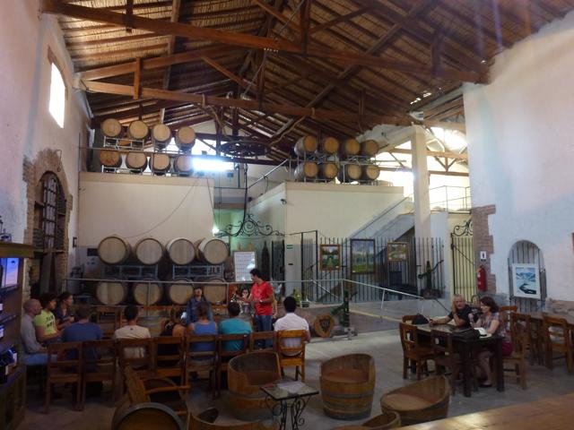 Cecchin Organic vinery