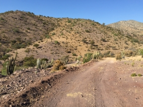 dirt road from Cogoti to La Ligua