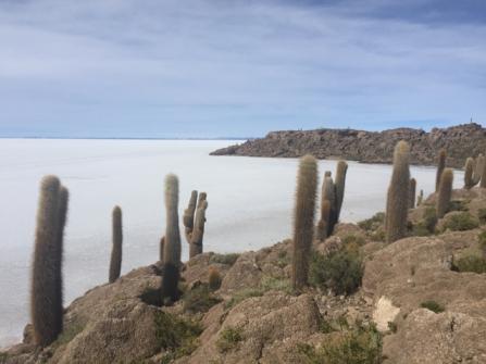 Isla Incahuasi (Pescado)