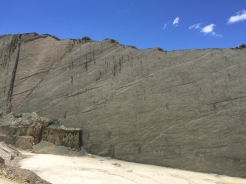 Dino's footprints near Sucre