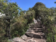 up to the Montaña Machu Picchu