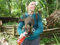 animal-rearing station cappuccino monkey