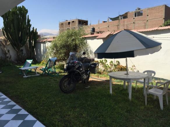 garden where I cleaned Flecha