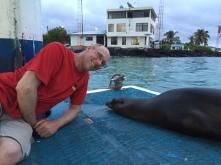sea lion and me