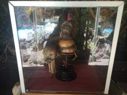 original shrinking head Museo Intiñan