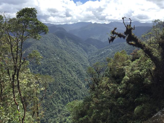 way from Popayán to San Augustín
