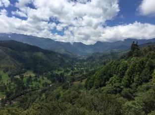 Mirador Salento Valle Cocora
