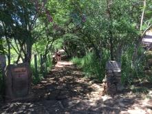 walk to Guane